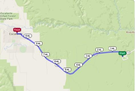 2015 10-miler route